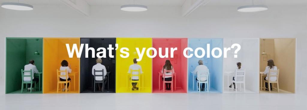 colore pareti bar